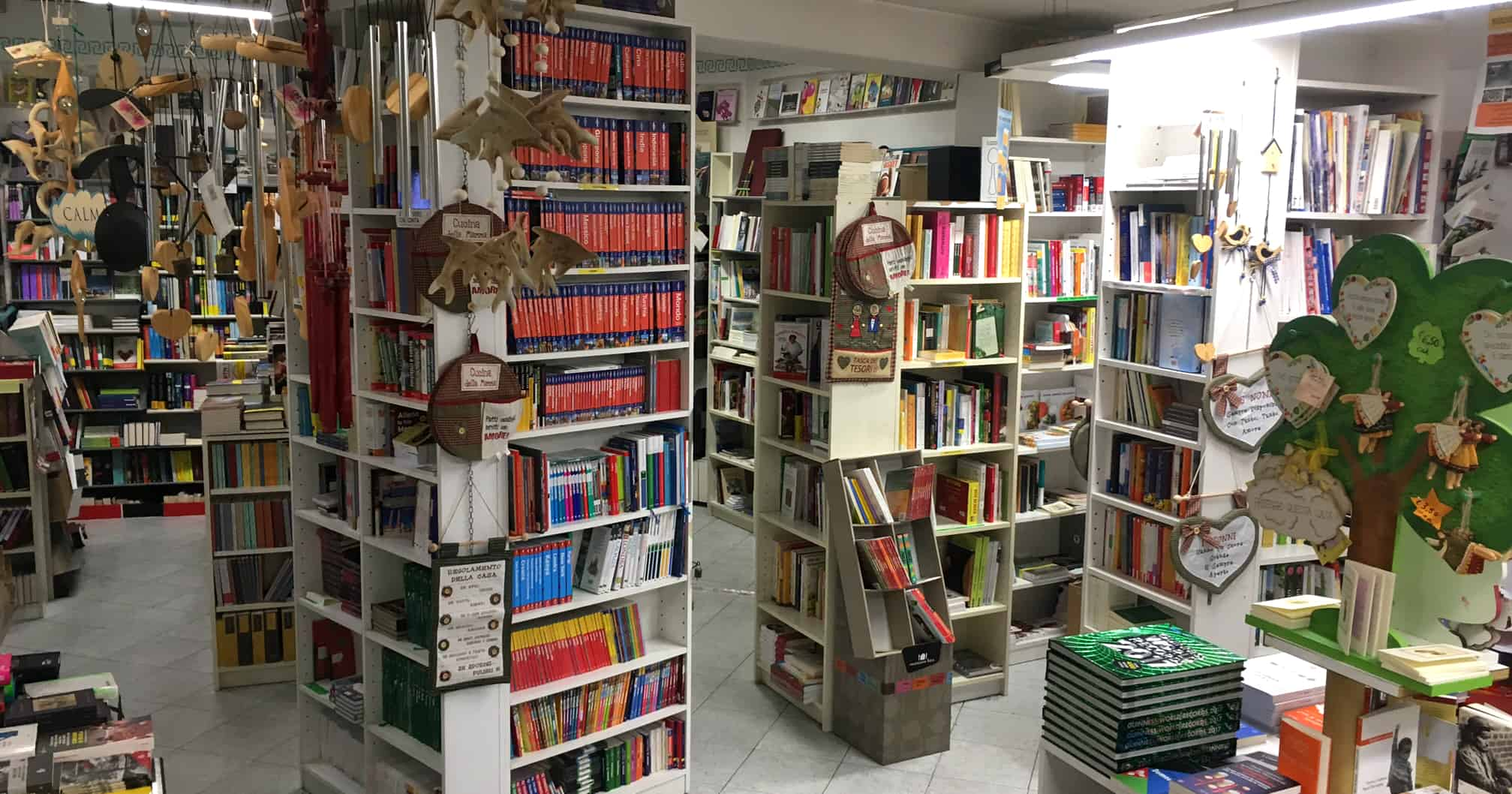 La memoria del mondo libreria editrice magenta pde