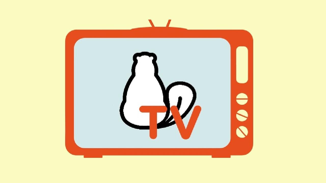Arriva Castoro TV, per ragazzi e insegnanti