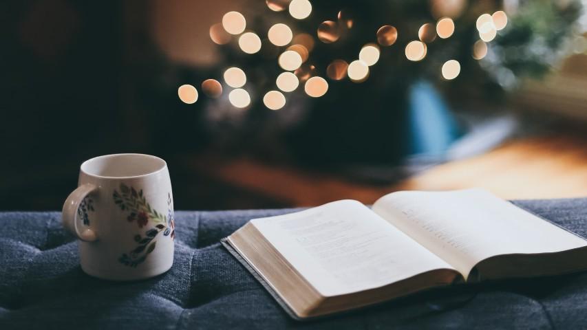 Natale con PDE Book Club: i nostri consigli di narrativa (e non solo)